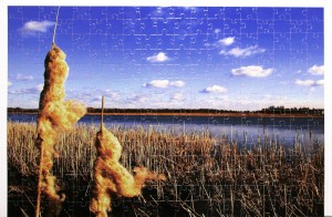Cewe - Fotopuzzle