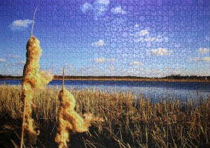 Ravensburger - 1000 Teile Puzzle