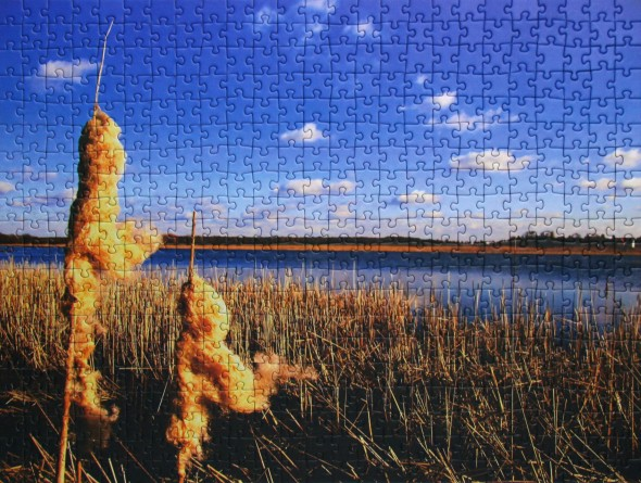 Fotopuzzle | Anbieter im Vergleich